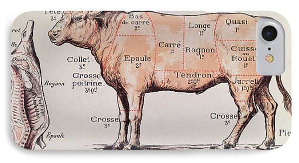 French Butcher Diagram Product Wiring Diagrams
