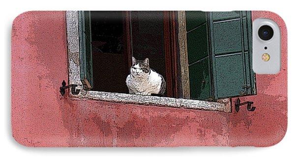 Venetian Cat In Window IPhone Case