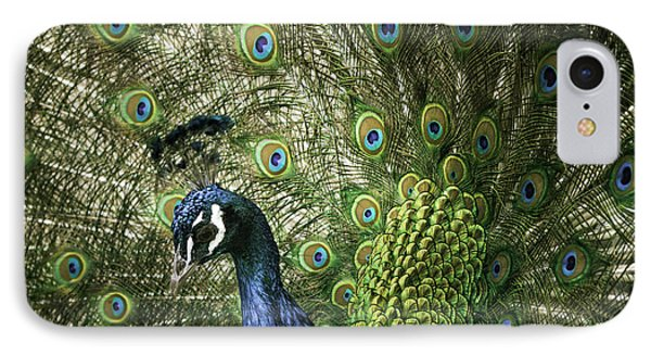Vibrant Peacock IPhone Case