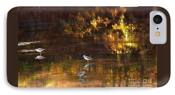 Wading In Light IPhone Case