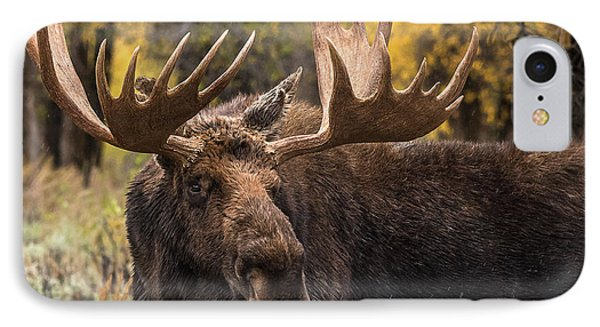Washakie In The Autumn Beauty IPhone Case
