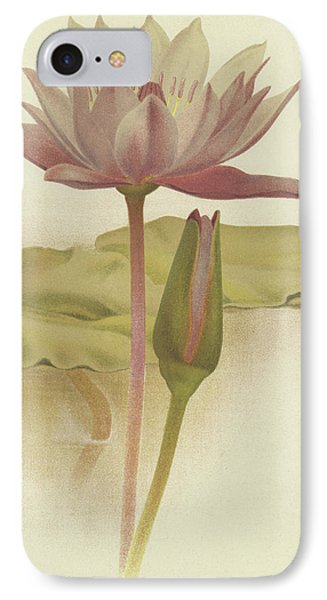 Water Lily  Nymphaea Zanzibarensis IPhone Case