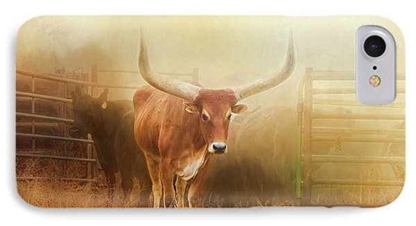 Watusi In The Dust And Golden Light IPhone Case