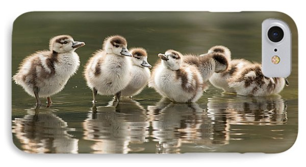 We Are Family - Seven Egytean Goslings In A Row IPhone Case