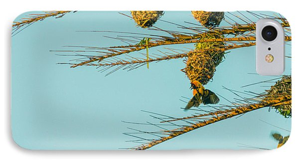 Weaver Birds IPhone Case