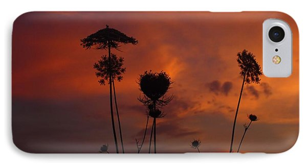Weeds In The Sunrise IPhone Case