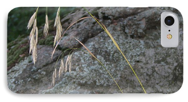 Weeping Grass IPhone Case