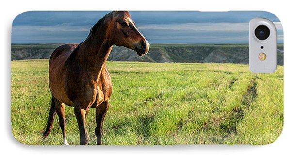 Horse iPhone 8 Case - Western Stallion by Todd Klassy