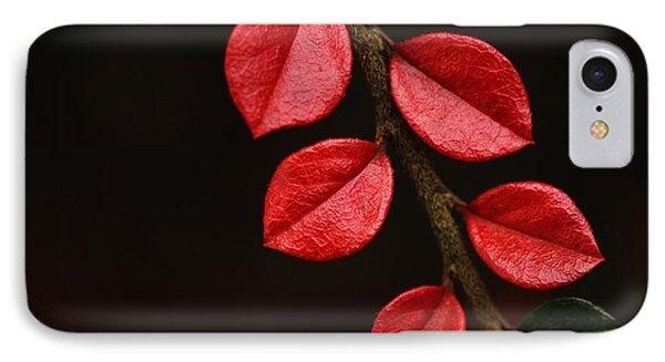 Wet Scarlet IPhone Case