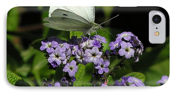 White Butterfly IPhone Case