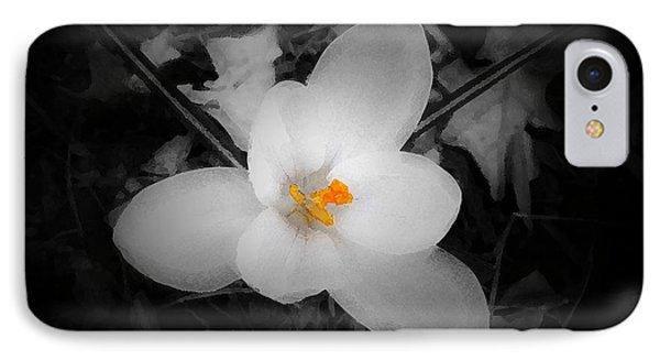 White Crocus - Edit IPhone Case