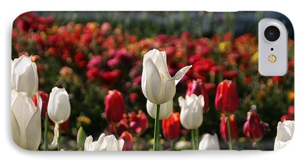 White Lit Tulips IPhone Case