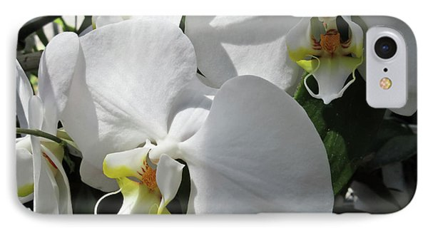 White Orchid Bloom Duo IPhone Case