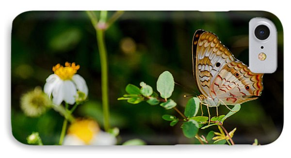 White Peacock On Common Beggar-tick IPhone Case