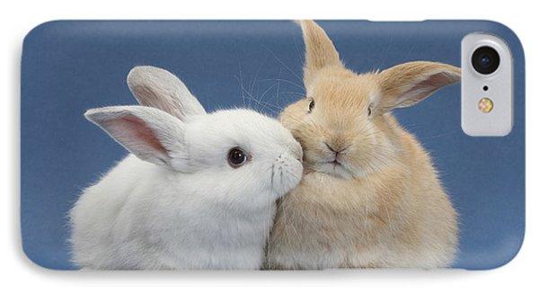 White Rabbit And Sandy Rabbit IPhone Case