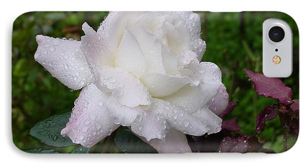 White Rose In Rain IPhone Case