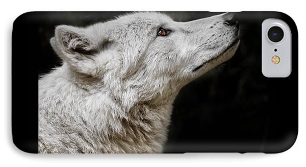 White Wolf IPhone Case