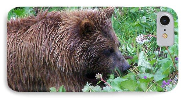 Wild Bear Eating Berries  IPhone Case