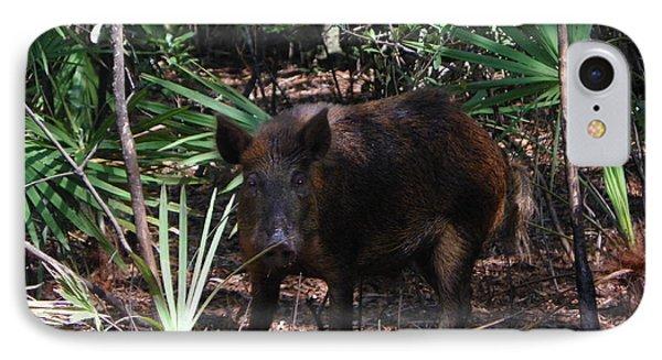 Wild Boar I IPhone Case