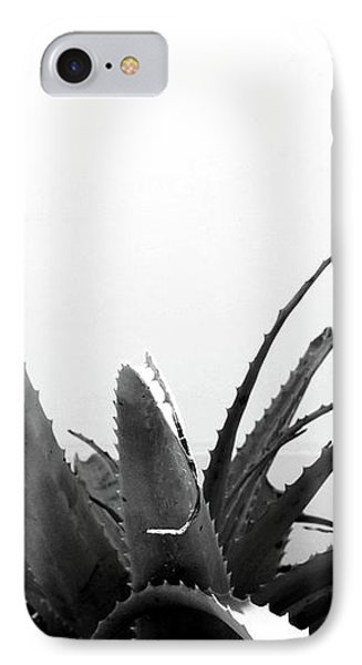 Wild Succulent-  By Linda Woods IPhone Case