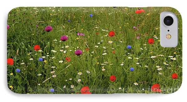 Wild Summer Meadow IPhone Case
