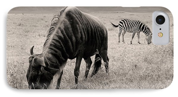 Wildebeest And Zebra IPhone Case