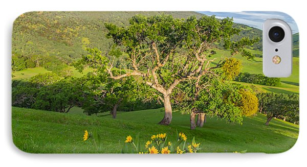 Wildflowers Above Round Valley IPhone Case