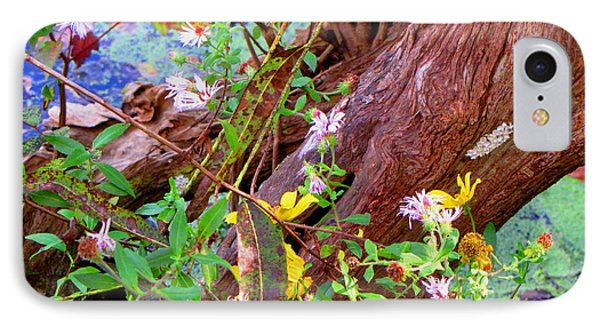 Wildflowers On A Cypress Knee IPhone Case
