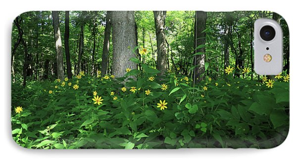 Wildflowers On The Edge Of The Forest IPhone Case