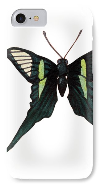 IPhone Case featuring the painting Winged Jewels 3, Watercolor Tropical Butterfly With Curled Wing Tips by Audrey Jeanne Roberts