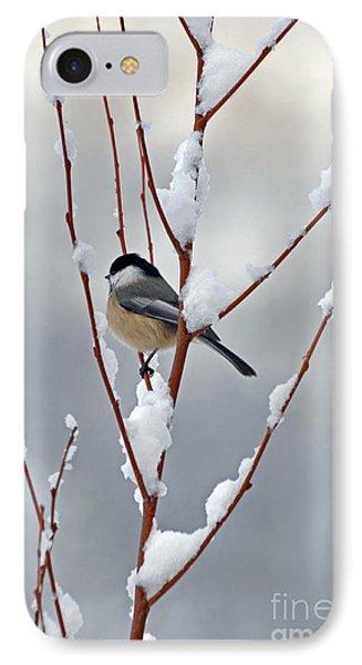 Winter Chickadee IPhone Case