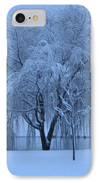 Winter Willow Tree Before Dawn_fort Worth_tx IPhone Case