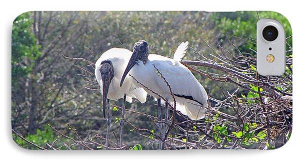 Wood Storks IPhone Case