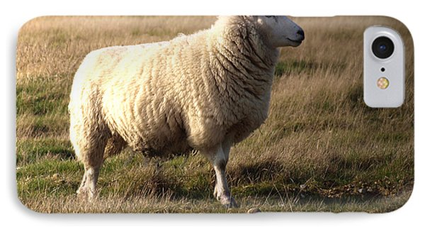 Sheep iPhone 8 Case - Woolly Coat by Sharon Lisa Clarke