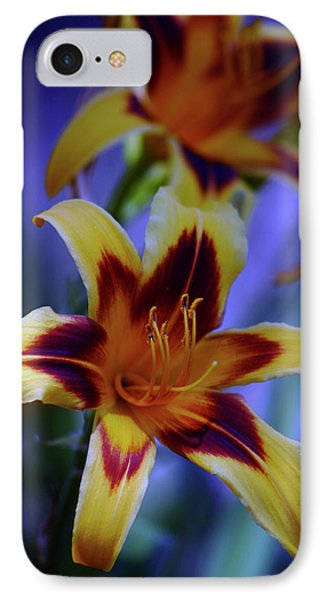 Yellow And Orange And Garnet Daylilies 1270 H_2 IPhone Case