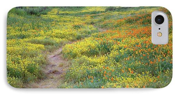 Yellow And Orange Wildflowers Along Trail Near Diamond Lake IPhone Case