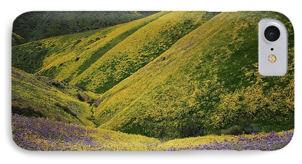 Yellow And Purple Wildlflowers Adourn The Temblor Range At Carrizo Plain National Monument IPhone Case