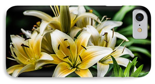 Yellow And White Lilys IPhone Case