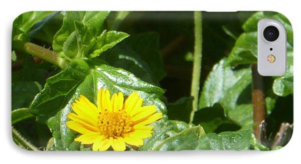 Yellow Caribbean Flower IPhone Case