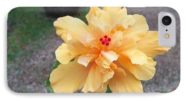 Yellow Double Hibiscus IPhone Case