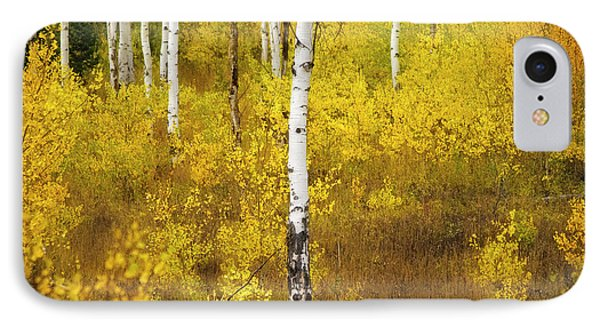 IPhone Case featuring the photograph Yellow Fall Aspen by Craig J Satterlee
