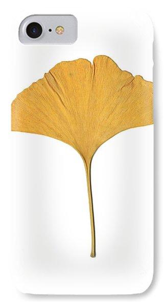 Yellow Ginkgo Leaf IPhone Case