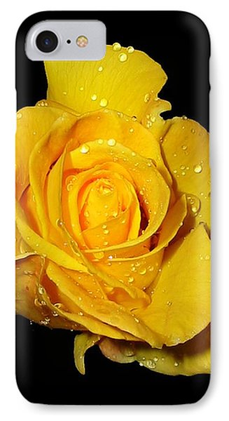 Yellow Rose With Dew Drops IPhone Case