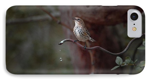 Yellow-rumped Warbler At Water Spout IPhone Case
