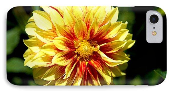 Yellow Sunshine IPhone Case