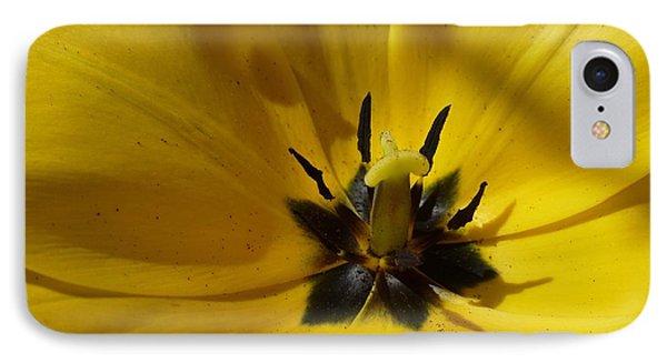 Yellow Tulip 1 IPhone Case
