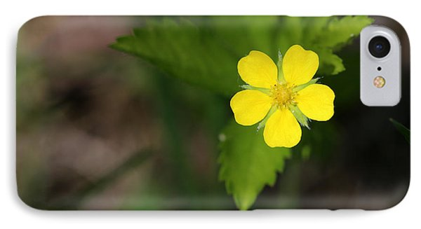 Yellow Wildflower IPhone Case