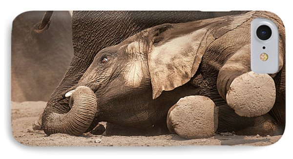 Young Elephant Lying Down IPhone Case