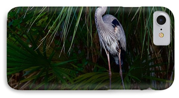 Young Great Blue Heron IPhone Case