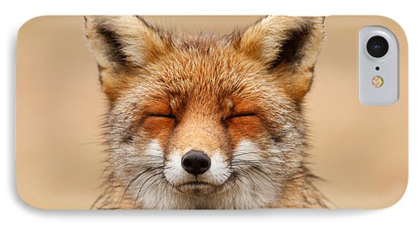 Zen Fox Red Fox Portrait IPhone Case